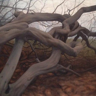 Toward tessellation, 2014, Towards Tessellation, oil on canvas with rabbit glue, 150 x 113